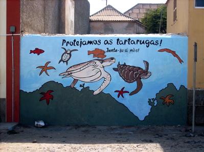 tf-boavista3